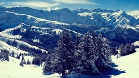 kış,kar,dağ,ağaç